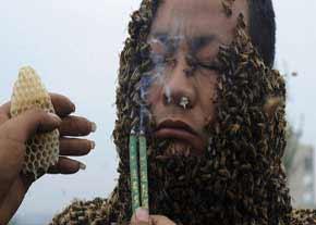 رکورد جهانی پوشاندن بدن با زنبور
